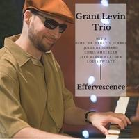 grant levin Effervescence