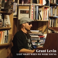 Grant Levin - Last Night When We Were Young